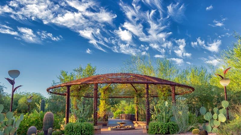 Abbandoni il giardino botanico Phoenix Az, gazebo con i cieli blu luminosi, le belle nuvole e la valanga di specie del cactus fotografie stock libere da diritti