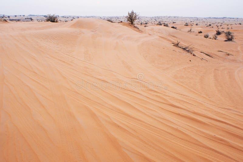 Abbandoni il paesaggio all'orizzonte, alla sabbia ed a Bush raro, foschia fotografie stock