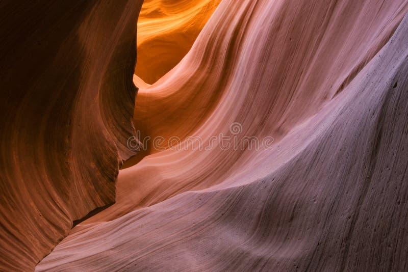 Abbassi il canyon della scanalatura dell'antilope fotografia stock