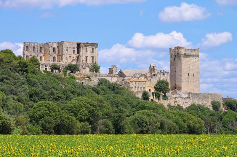 Abbaye de Montmajour royaltyfria foton