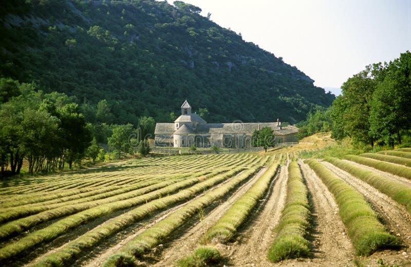 Abbaye de Senanque imagem de stock