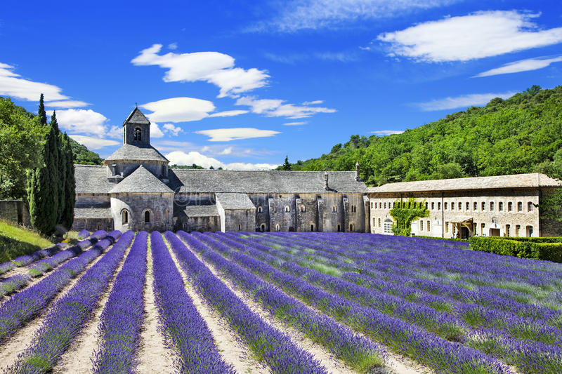 Abbaye de Senanque with blooming lavender field. Provence, France royalty free stock photography