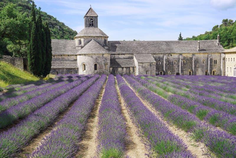 Abbaye de Senanque près du village de Gordes avec le gisement de lavande photographie stock libre de droits