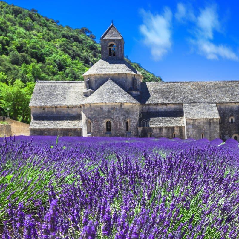 Abbaye med lavendelfältet, Provence, Fran arkivbild