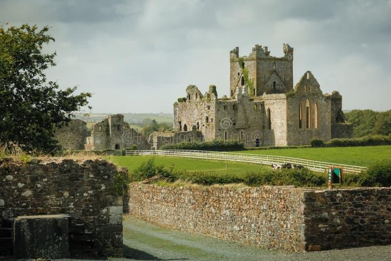 Abbazia di Dunbrody contea Wexford l'irlanda fotografia stock libera da diritti
