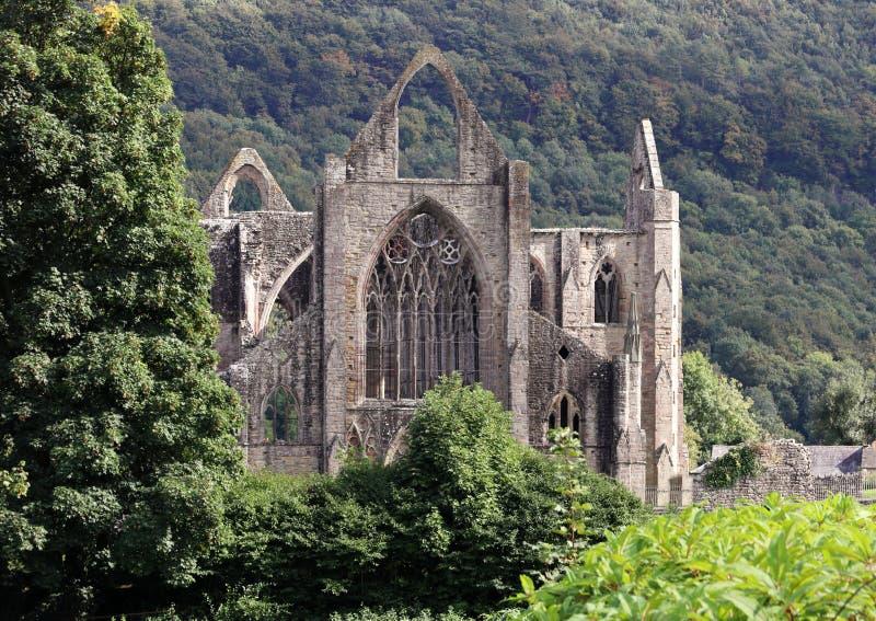 Abbazia in Galles del sud, una costruzione Cistercense storica di Tintern fotografia stock libera da diritti