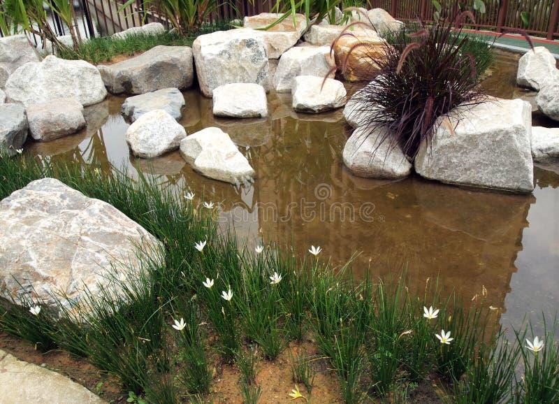 Abbellimento recentemente piantato del rockery dell'acqua immagini stock libere da diritti
