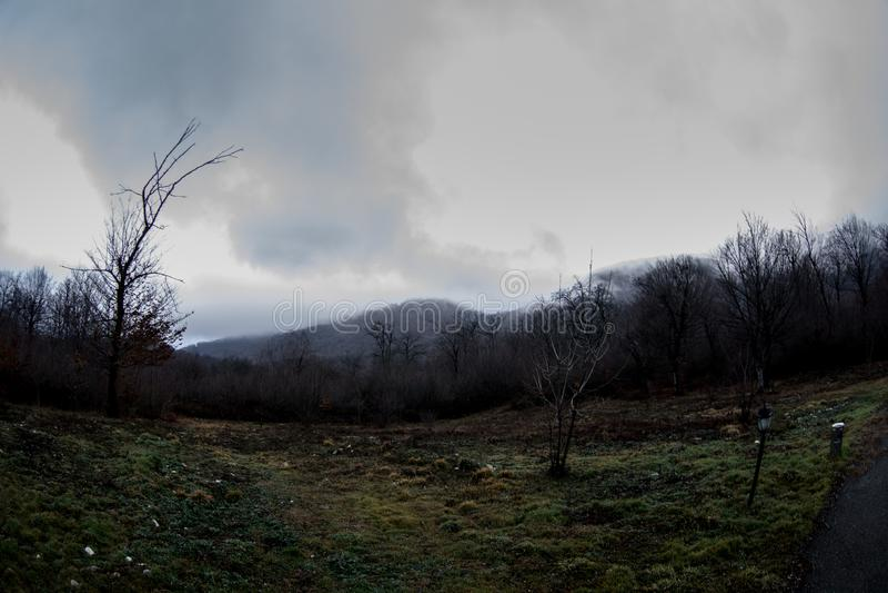 Abbellisca con bella nebbia in foresta sulla collina o trascini attraverso una foresta misteriosa dell'inverno con le foglie di a fotografie stock libere da diritti