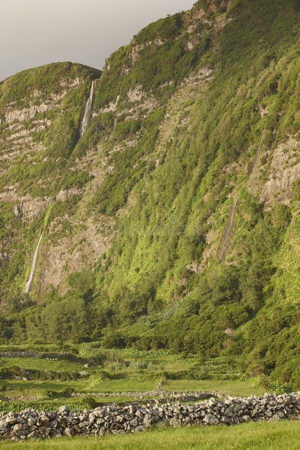 Abbellisca con le cascate in Faja grande, isola del Flores Le Azzorre, fotografia stock libera da diritti