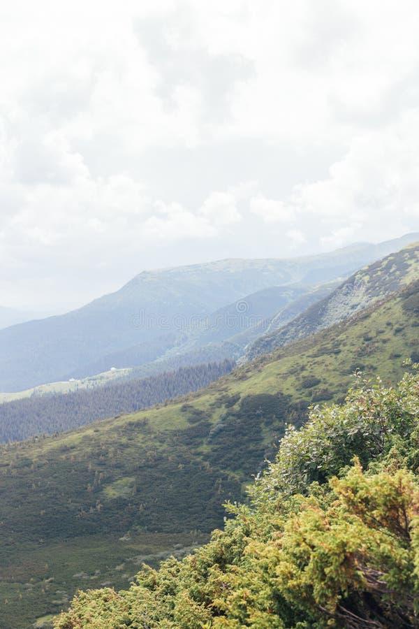 Abbellisca con le montagne, la foresta ed il cielo nuvoloso fotografie stock libere da diritti