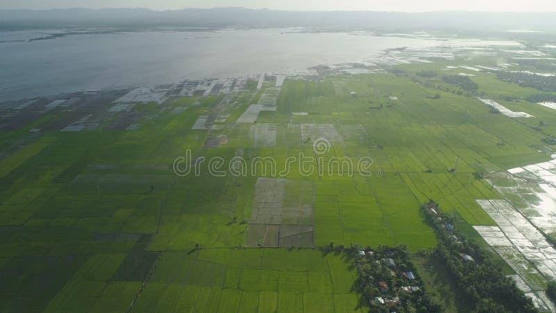 Abbellisca con un lago, le terre dell'azienda agricola e le montagne immagini stock libere da diritti