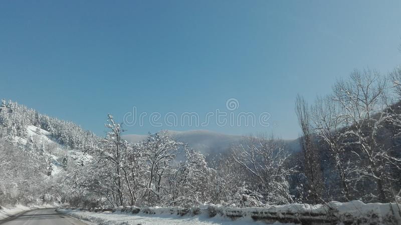 abbellisca, il giorno di inverno, il tempo, la vista, foresta fotografia stock libera da diritti