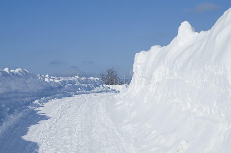 Abbellisca l'inverno Siberia immagine stock