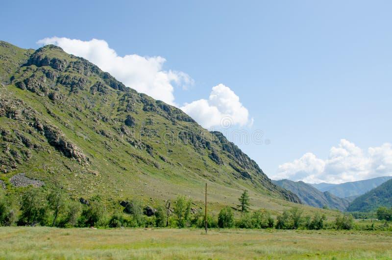 Abbellisca la montagna in montagna Altai bello immagini stock