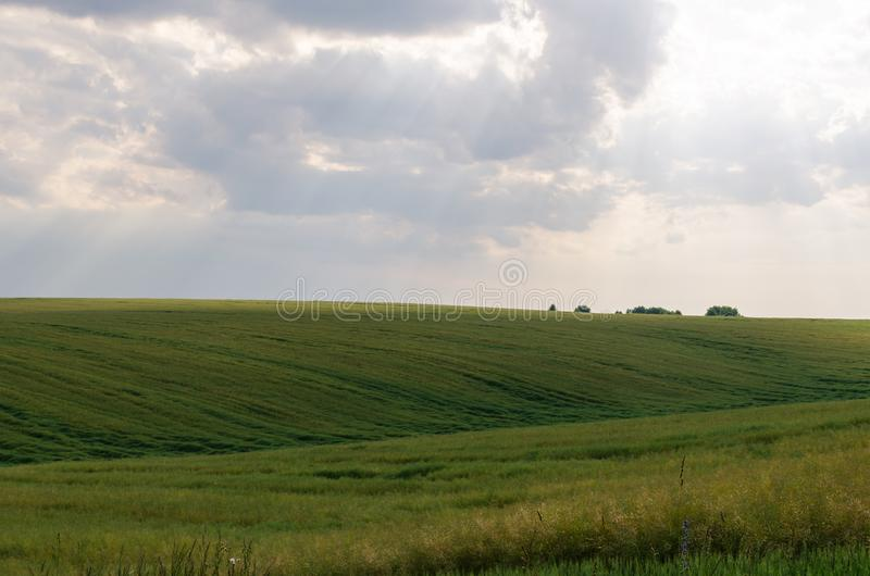 Abbellisca la vista dei campi e delle nuvole verdi nella stagione estiva fotografie stock