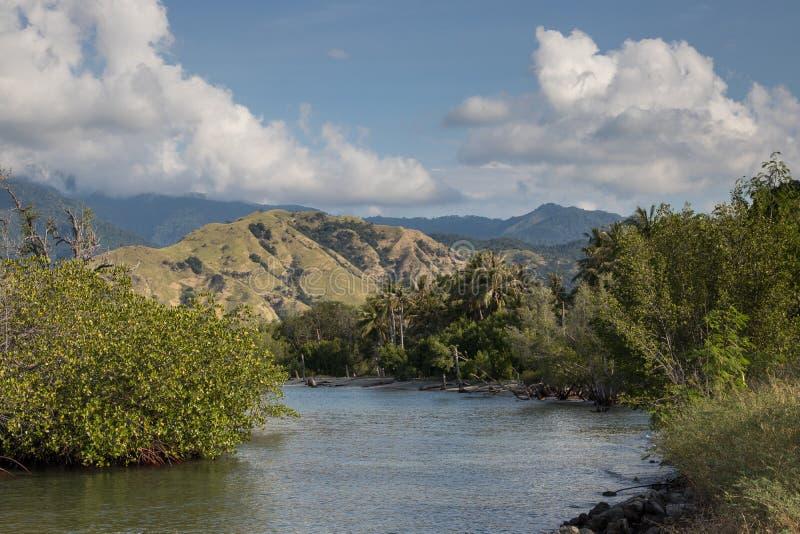 Abbellisca nel Nord dell'isola del Flores - Indonesia immagine stock