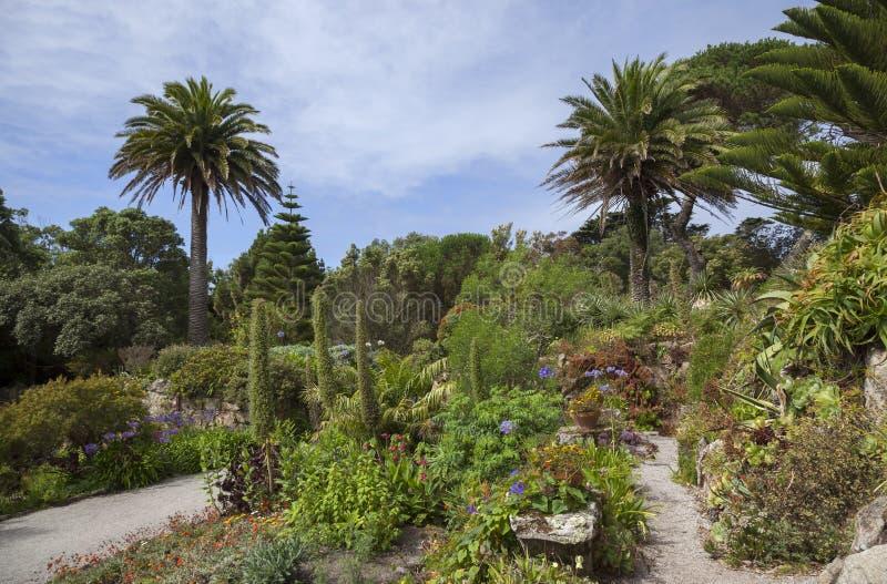 Abbey Gardens, Tresco, isole di Scilly, Inghilterra fotografie stock