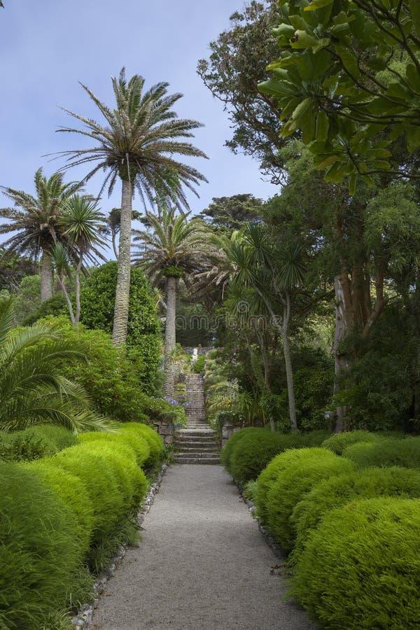 Abbey Gardens, Tresco, isole di Scilly, Inghilterra immagine stock libera da diritti