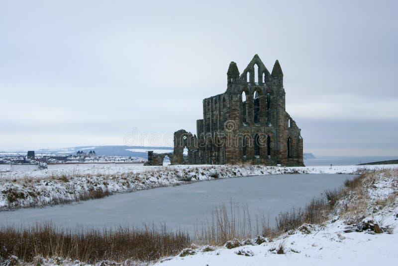 abbey norr whitby yorkshire royaltyfri fotografi