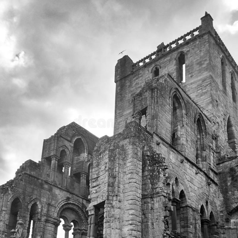 Abbey ruins church history. Church ruins abbey black white history stock image