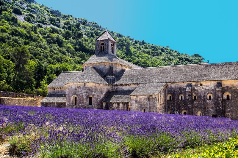 Abbey of Senanque and blooming rows lavender flowers. Gordes, Luberon, Vaucluse, Provence, France. royalty free stock photos