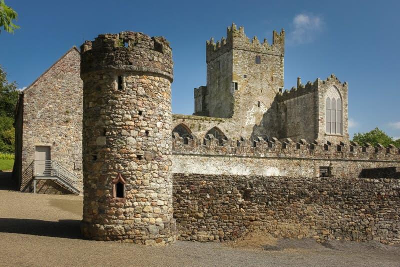 abbey tintern okręg administracyjny Wexford Irlandia obrazy royalty free