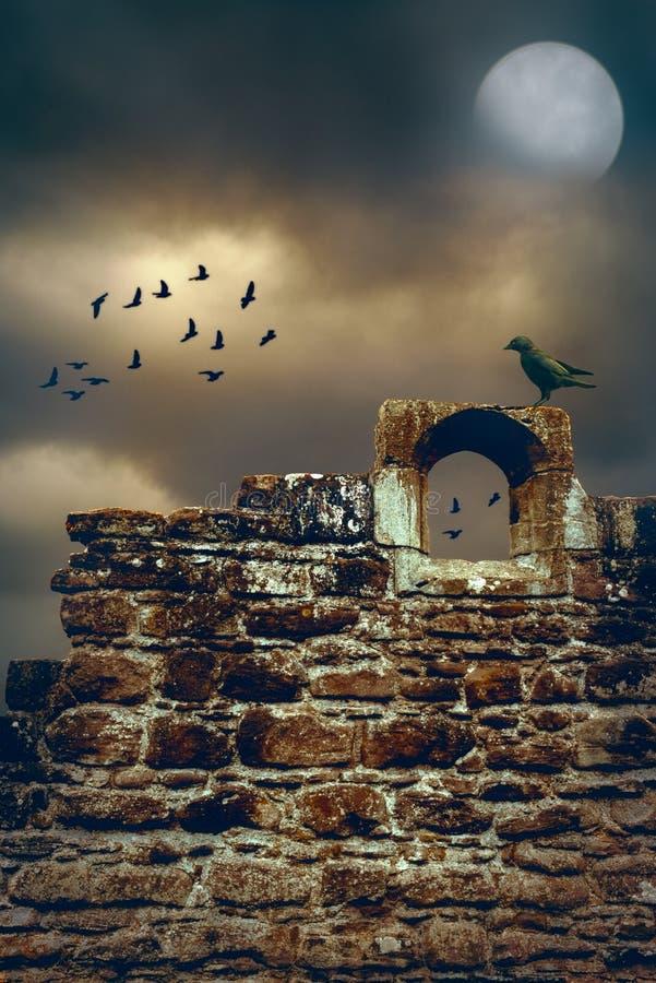 Abbey Wall imagen de archivo libre de regalías