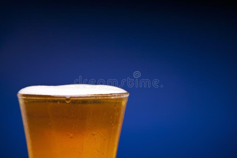 Abbia una birra immagine stock