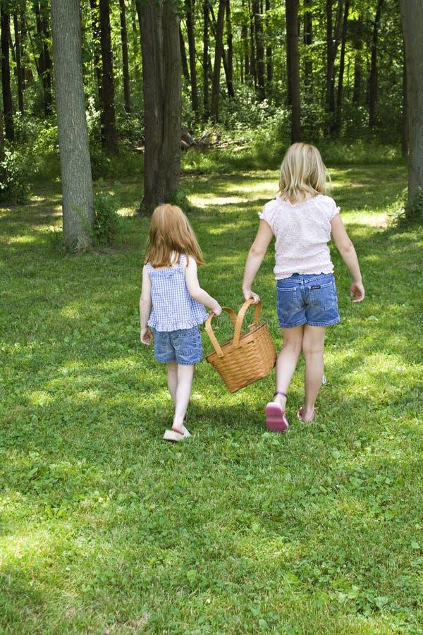 Abbiamo un picnic fotografia stock