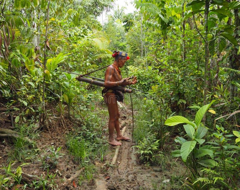 Abbigliamento tradizionale della tribù di mentawai dello sciamano immagine stock libera da diritti