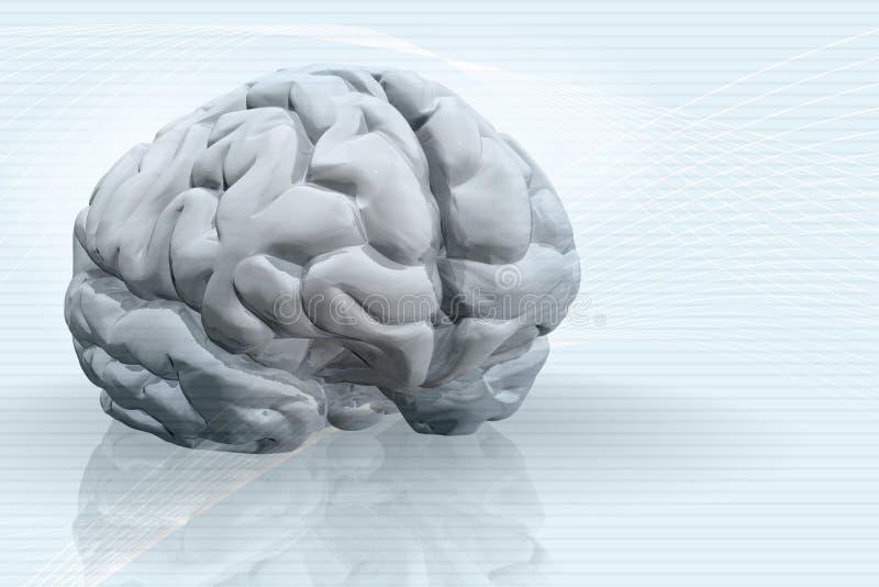 Abbildung 3D des Gehirns lizenzfreie abbildung