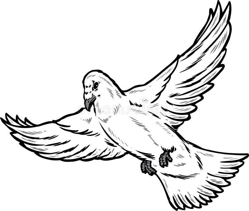 Abbildung der Taube im Flug stock abbildung