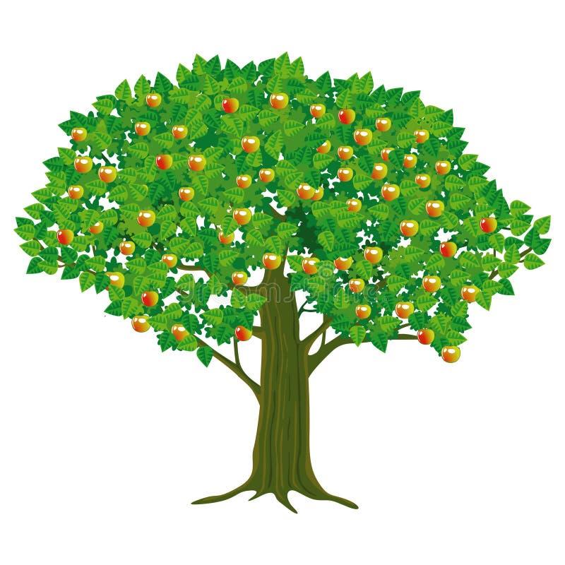 Abbildung des Apfelbaums stock abbildung