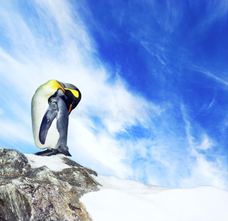 Abbildung eines Pinguins stockbild
