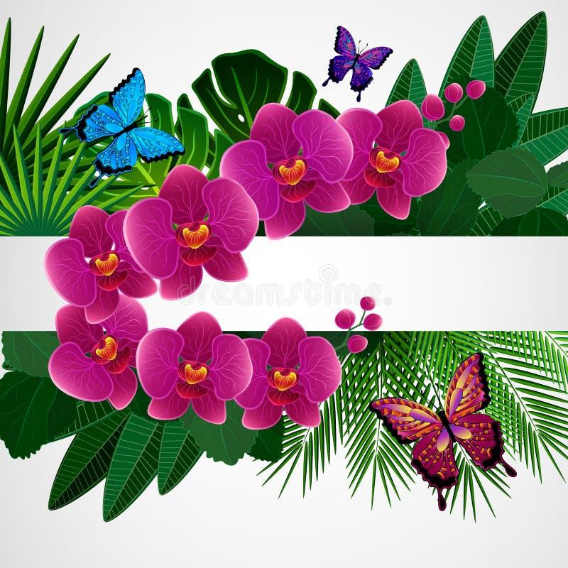 Abbildung für Ihre Auslegung Orchideenblumen mit Schmetterlingen vektor abbildung