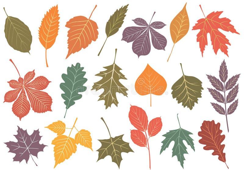 Abbildungset von 19 Herbstblättern. lizenzfreie abbildung