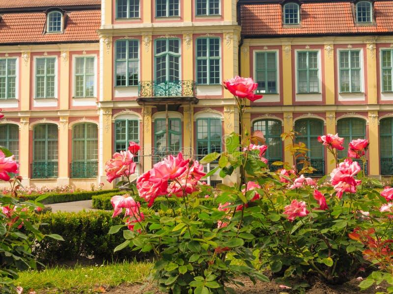 Abbotslotten och blommor i gdansk oliva parkerar royaltyfri foto