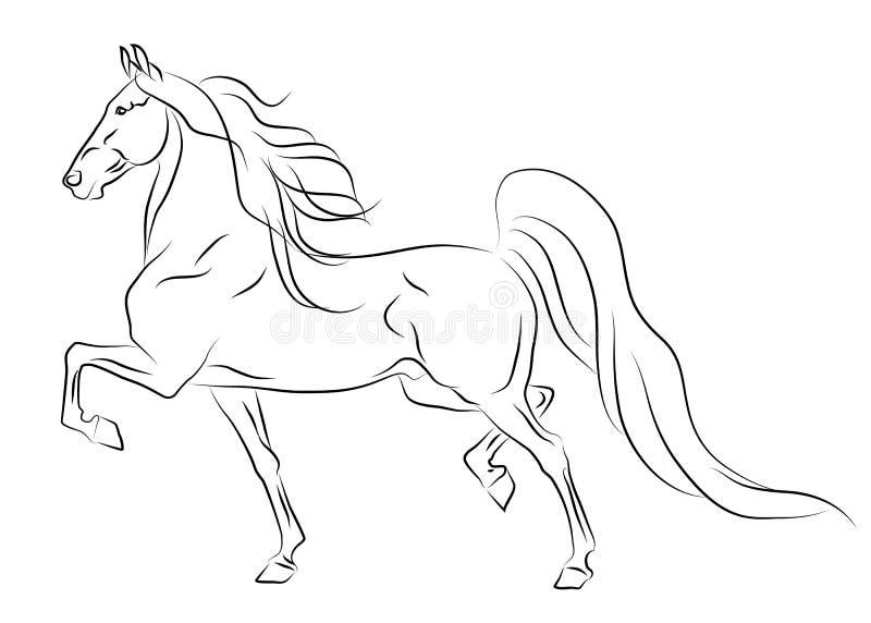 Abbozzo americano corrente del cavallo di Saddlebred illustrazione vettoriale
