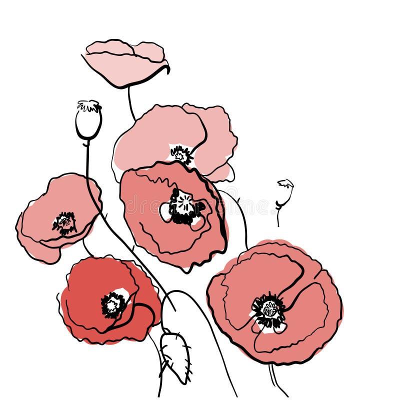 Abbozzo del fiore del papavero illustrazione di stock