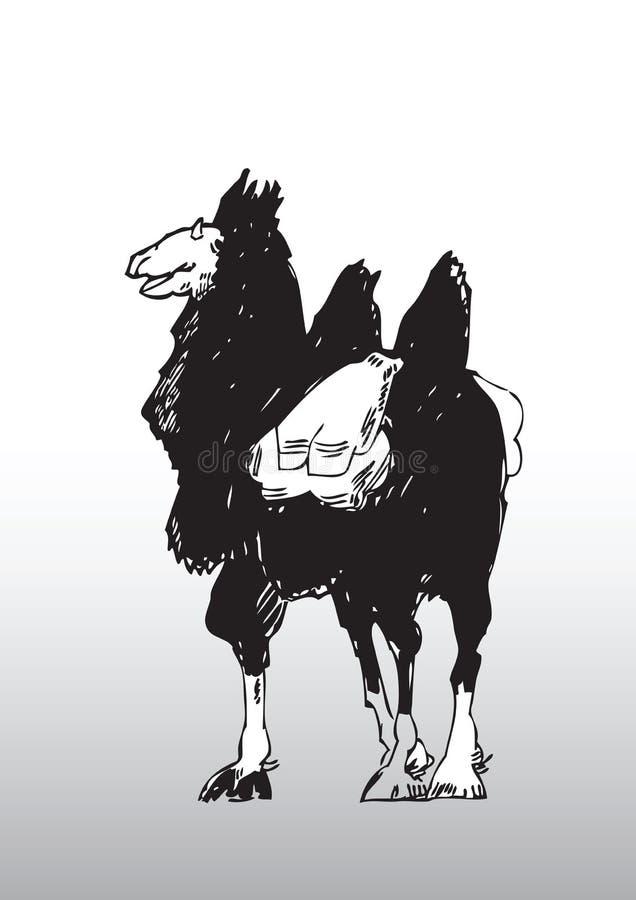Abbozzo di un cammello con la sella illustrazione vettoriale