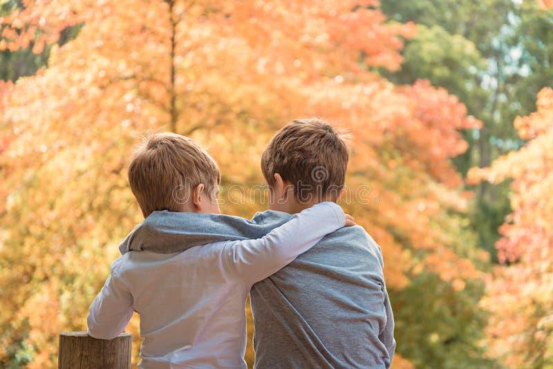 Abbracciando i fratelli che parlano l'un l'altro fotografia stock libera da diritti