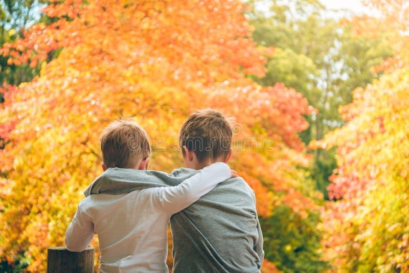 Abbraccio dei fratelli che si siedono nella foresta di autunno fotografie stock libere da diritti
