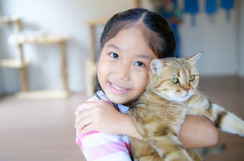 Abbraccio sveglio della ragazza e giocare il gatto scozzese del popolare fotografie stock libere da diritti