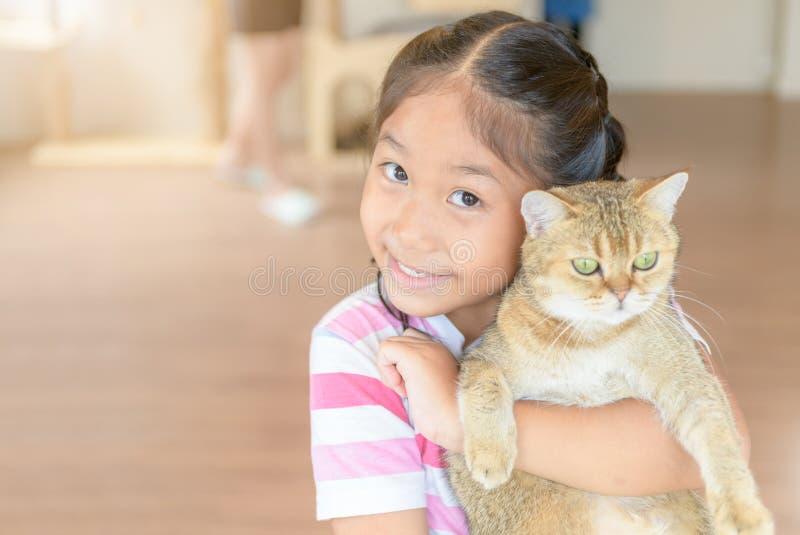 Abbraccio sveglio della ragazza e giocare il gatto scozzese del popolare fotografia stock libera da diritti