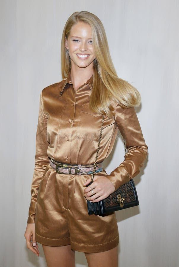 Abby Champion imagens de stock royalty free