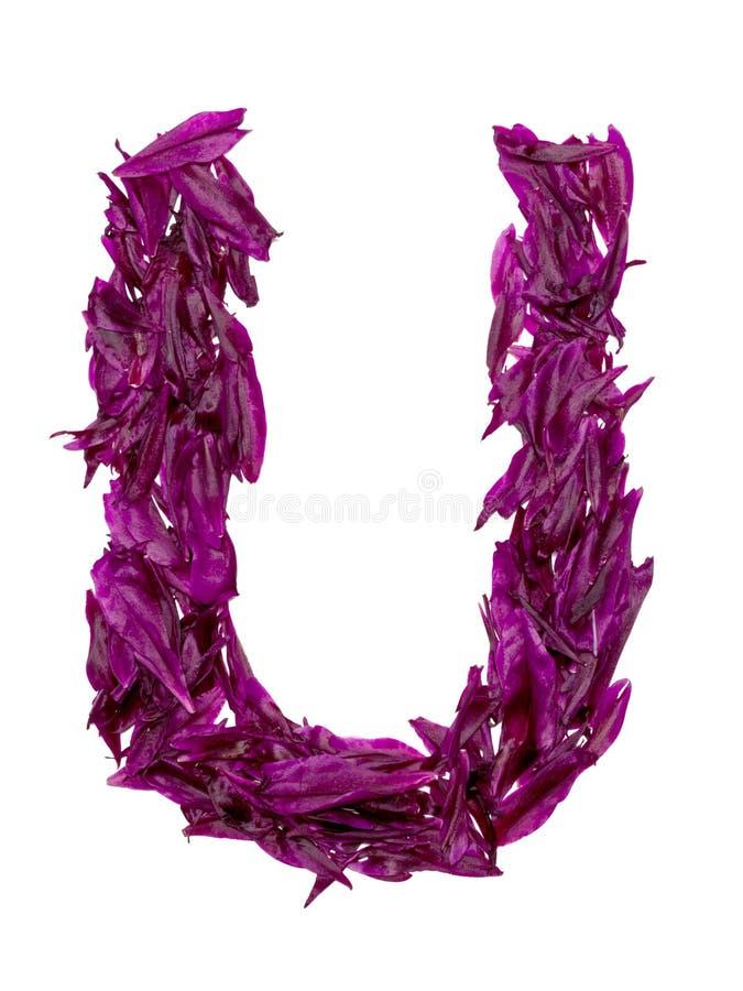 ABC, het alfabet van rode, donkere roze en groene bloembloemblaadjes alfabet van bloemblaadjes van pioenen royalty-vrije stock foto