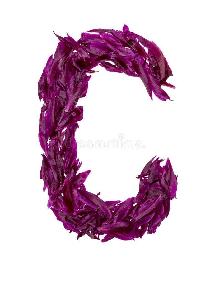ABC, het alfabet van rode, donkere roze en groene bloembloemblaadjes alfabet van bloemblaadjes van pioenen royalty-vrije stock afbeelding