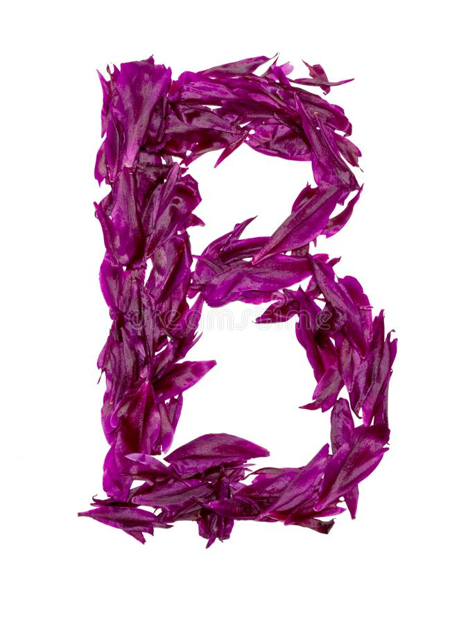 ABC, het alfabet van rode, donkere roze en groene bloembloemblaadjes alfabet van bloemblaadjes van pioenen stock foto