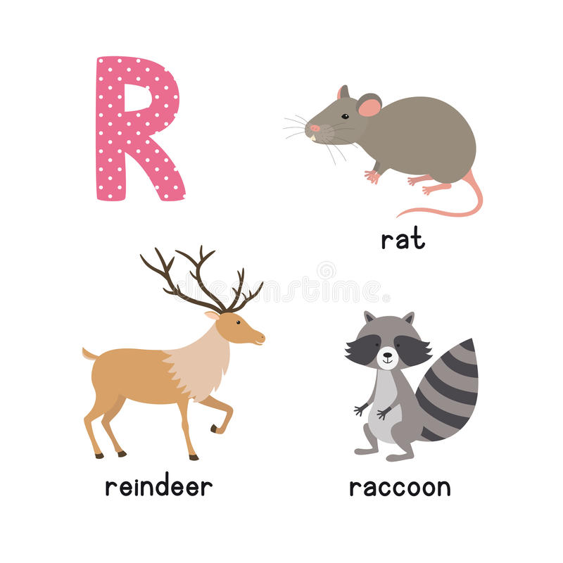 ABC letra los iconos divertidos del niño de R fijados: mapache, reno, rata libre illustration