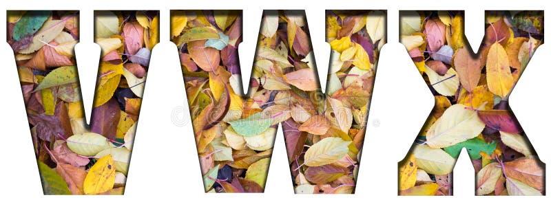 Abc pisze list jesień liście na białym tle, zdjęcie stock